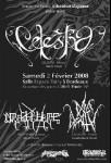 02.02.08 - Celestia