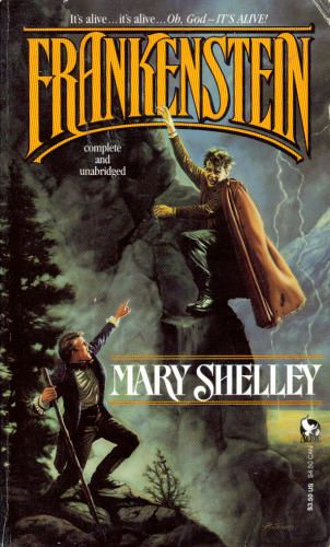 book reports on frankenstein by mary shelley From karen karbiener's introduction to frankenstein werewolves, vampires, witches, and warlocks have been the stuff of folklore, legend, and nightmare for centuries, yet none have so haunted the public imagination as the monster created by eighteen-year-old mary shelley in 1816.