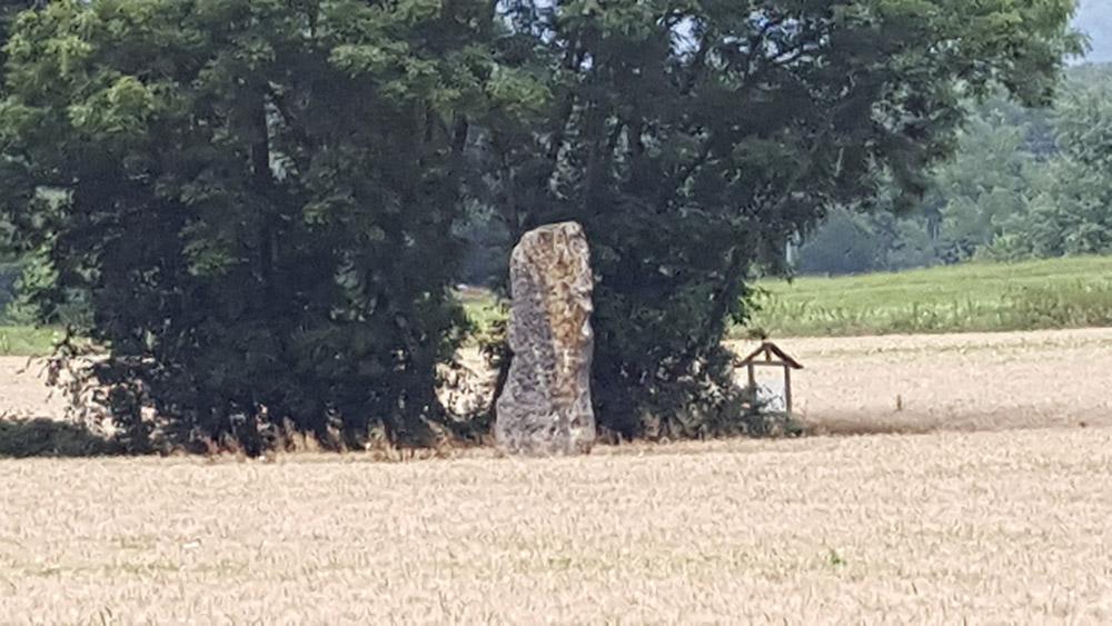 Menhir de Simandre-sur-Suran - Ragnard Rock Fest Part 2