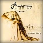 AMPHITRYON - Sumphokeras