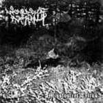 ARMAGEDDA - Split Armagedda / Woods of Infinity